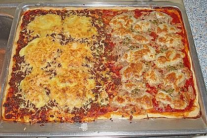 Bester Pizzateig 33