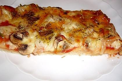 Bester Pizzateig 3