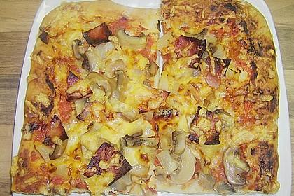 Bester Pizzateig 18