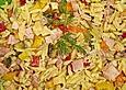 Reisnudelsalat mit bunter Paprika und Käse