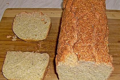 Kokos-rote Linsen-Kuchen/Brot