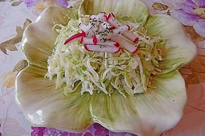 Griechischer Krautsalat 5