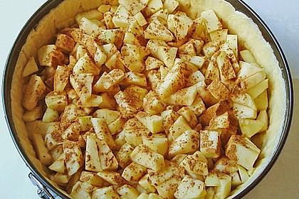 Apfelkuchen mit Zimt - Sahnehaube 27