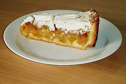 Apfelkuchen mit Zimt - Sahnehaube 31