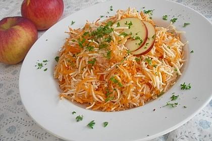 Karotten - Sellerie - Salat