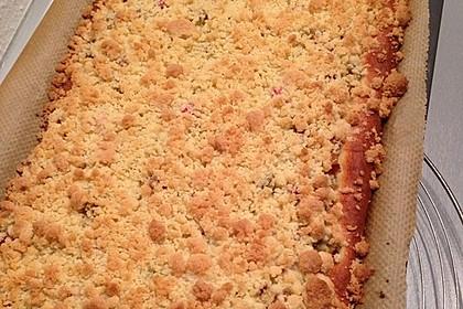 Rhabarber - Streusel Kuchen auf Quark - Öl Teig 11
