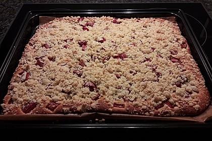 Rhabarber-Streusel-Kuchen 1
