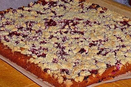 Rhabarber-Streusel-Kuchen 12