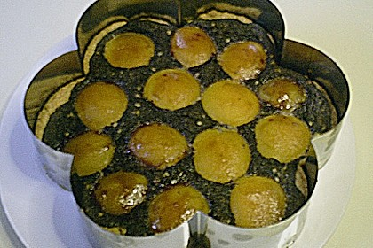 Mohnkuchen für eine Springform
