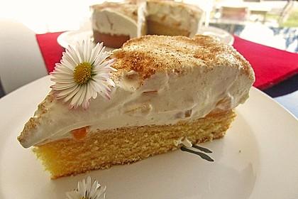 Pfirsich-Schmand-Kuchen 3