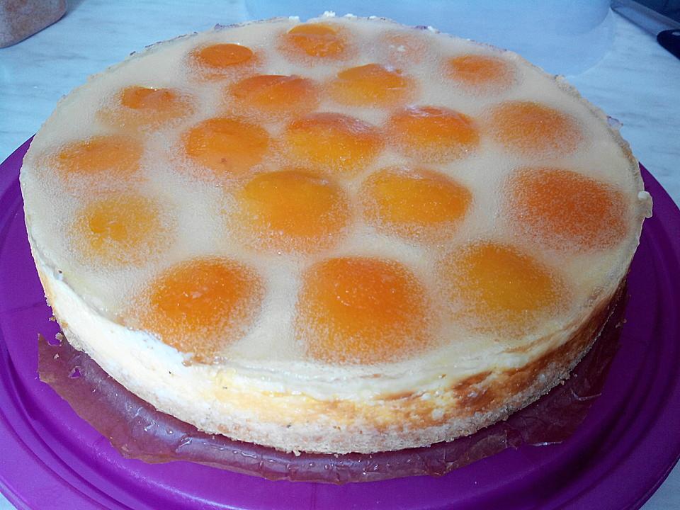 Aprikosen kuchen vanillepudding rezepte for Pinterest kuchen
