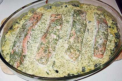Lachs - Spinat - Auflauf 1