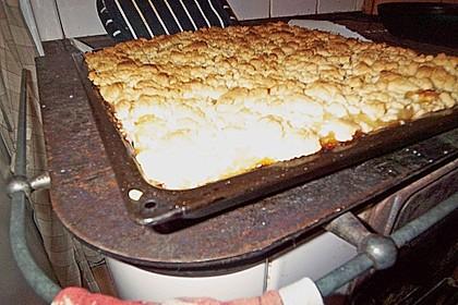Streusel Apfel Blechkuchen 13