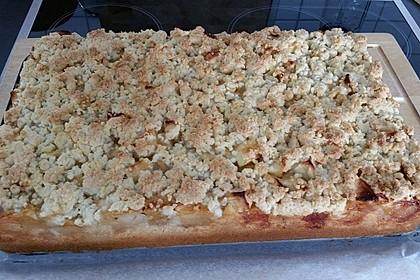 Streusel Apfel Blechkuchen 10