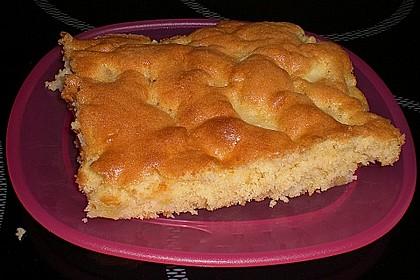 Apfelkuchen Großmutters Art 119