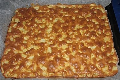 Apfelkuchen Großmutters Art 129