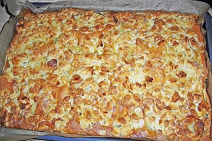 Apfelkuchen Großmutters Art 30