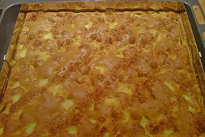 Apfelkuchen Großmutters Art 207