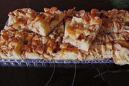 Apfelkuchen Großmutters Art 52