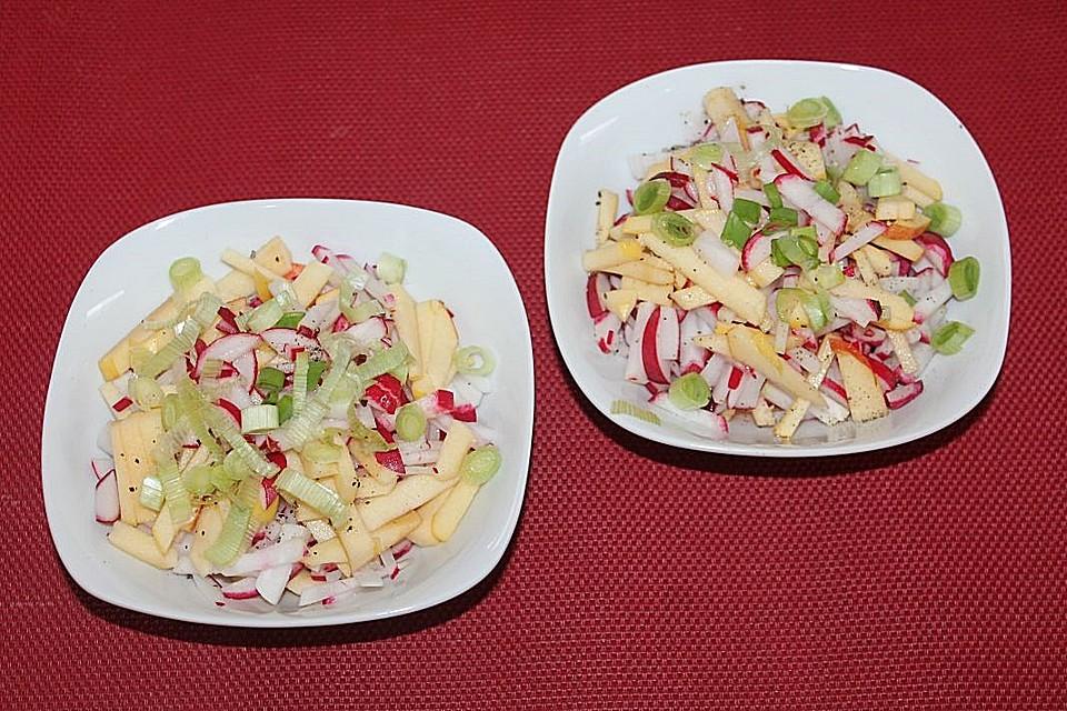 radieschen apfel salat mit lauchzwiebeln rezept mit bild. Black Bedroom Furniture Sets. Home Design Ideas