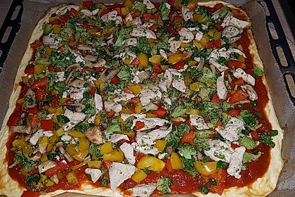 Low Carb Pizzarolle 101