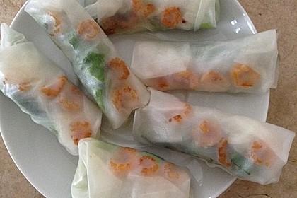 Vietnamesische Sommerrollen 14