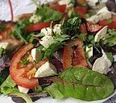 Blattsalat mit Tomate und Mozzarella (Bild)