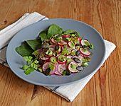 Radieschensalat mit Kürbiskernen in Senf-Honig-Dressing