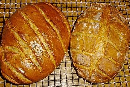 Lecker - Schmecker - Brot 49