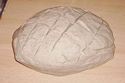 Lecker - Schmecker - Brot 202
