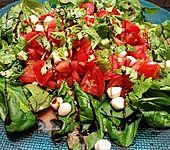 Tomatensalat im Spinatbett