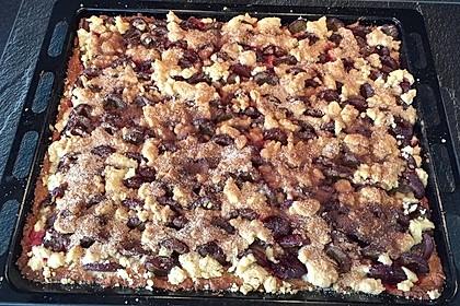 Bester und leckerster Zwetschgenkuchen mit Streuseln 1
