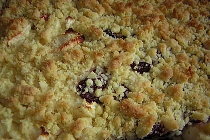 Bester und leckerster Zwetschgenkuchen mit Streuseln 2
