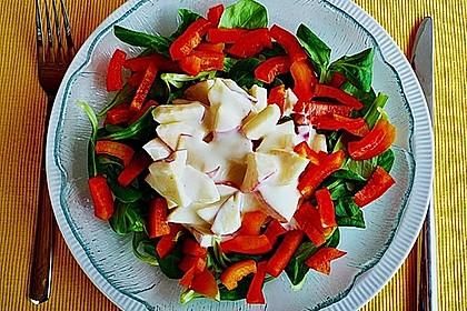 Apfel - Paprika - Salat