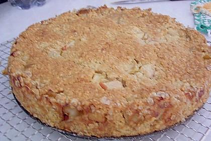 Apfelkuchen mit Haferflocken 1