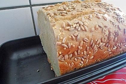 Einfaches Brot 31