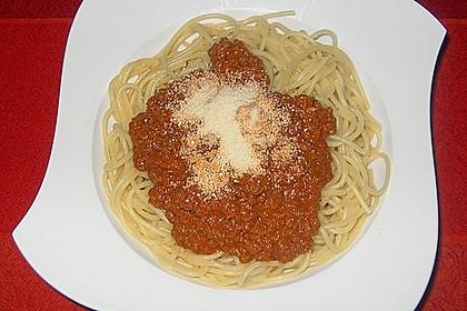 Spaghetti mit Sahne - Tomatenmark - Hackfleisch - Sauce