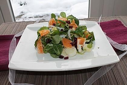 Chicorée und Feldsalat mit Cranberries und Mandarinen