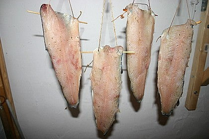 Kaltgeräucherte Forellen