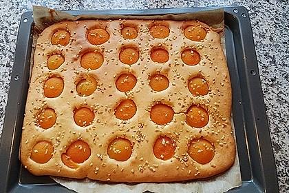 Saftiger Rührkuchen mit Aprikosen 1