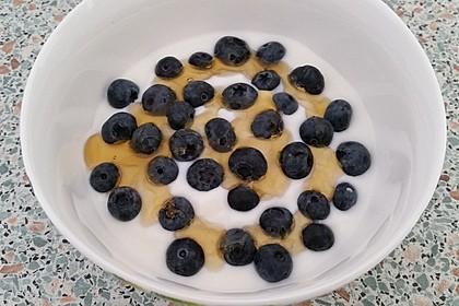 Leichtes Joghurt-Blaubeeren-Dessert 1