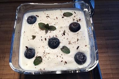 Leichtes Joghurt-Blaubeeren-Dessert