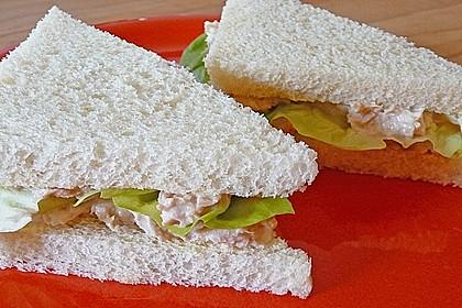 Thunfisch - Sandwiches