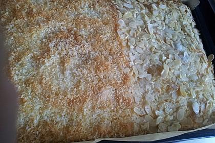 Buttermilch - Kokos - Kuchen 2