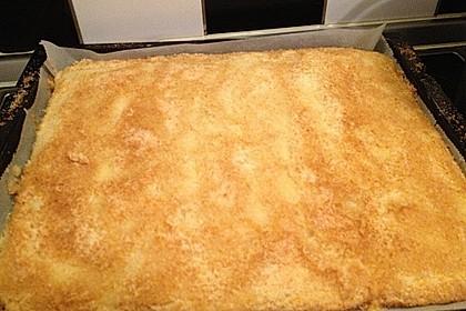 Buttermilch - Kokos - Kuchen 12
