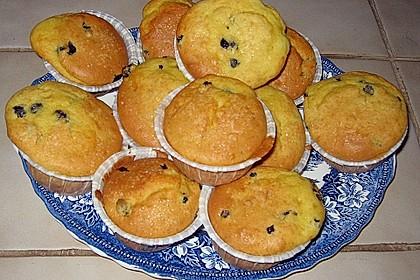 Blueberrymuffins 13