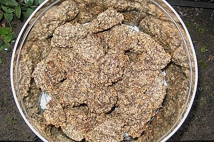Nuss - Schokoladen - Plätzchen 17