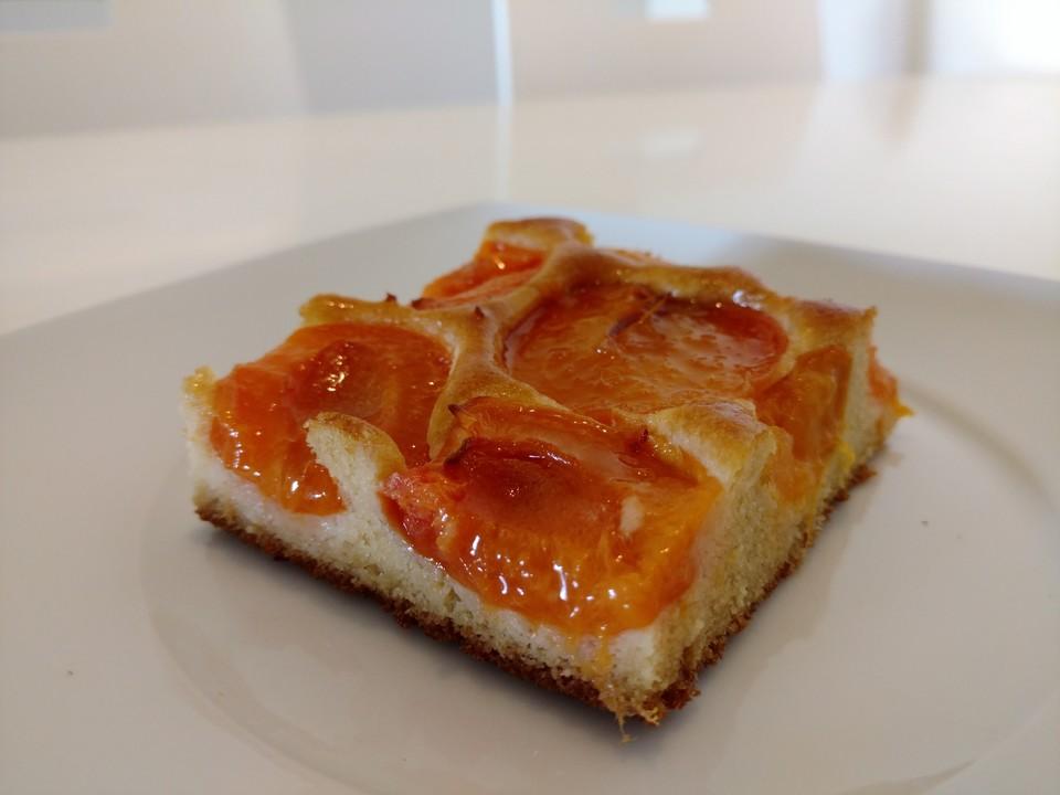 marillen aprikosenkuchen ohne zucker rezept mit bild. Black Bedroom Furniture Sets. Home Design Ideas