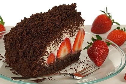 Maulwurfkuchen mit Erdbeeren 1