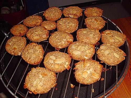 schnelle kekse rezepte weihnachten halle